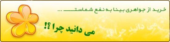 Javaheri_Bina-30110515040556