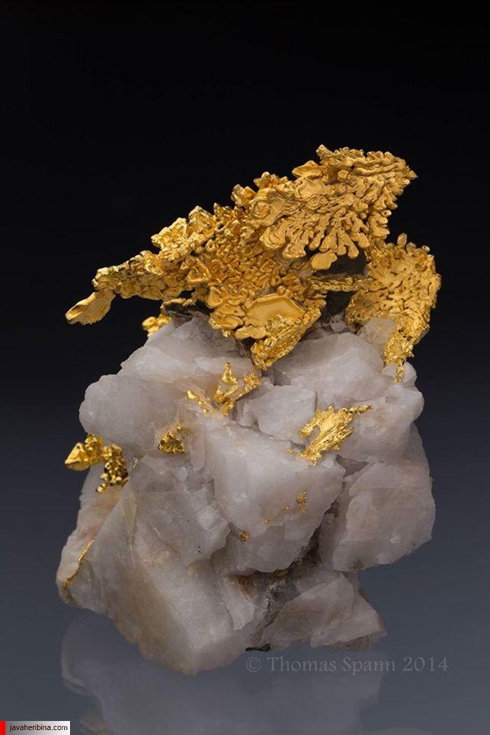 طلای اژدها روی کوارتز