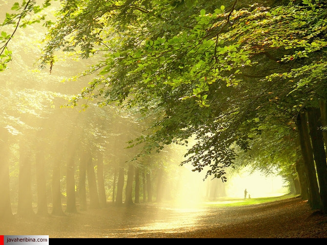 تصاویر فصل تابستان با کیفیت بالا