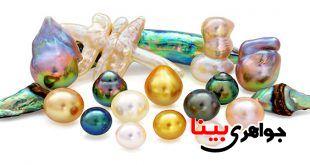 سنگ های ارگانیک